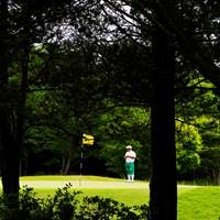 森の中のおすし屋さん 2019年 ~全英への道~ミズノオープン at ザ・ロイヤルGC 2日目 すし石垣