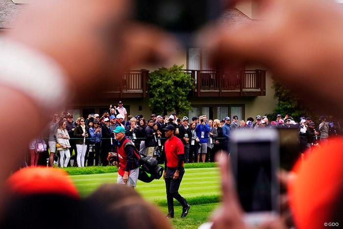 みんなで撮ろうタイガーウッズ! 2019年 全米オープン 最終日 タイガー・ウッズ
