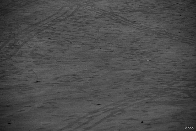 足跡、カートが通った跡、ボールが転がった跡・・・みんなの軌跡。