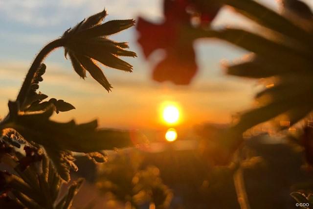 太陽 夏の北極圏は太陽が沈まない白夜となる