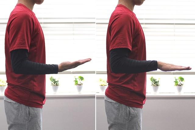 2019 プラス1 肘の痛み 手のひらを返す
