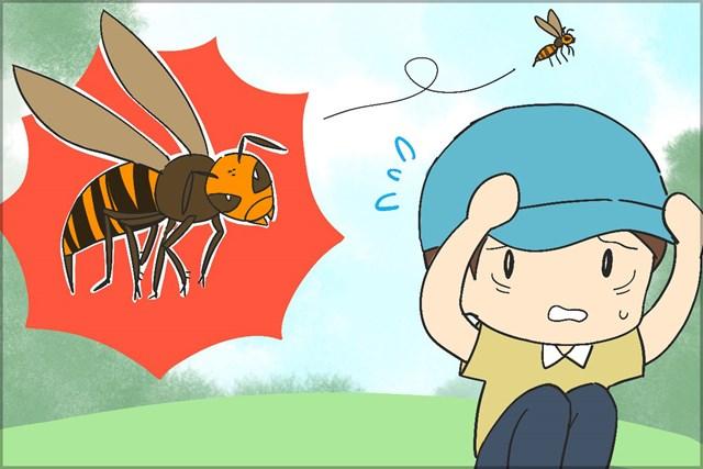 虫刺されの中でも特に危険なのがスズメバチだ
