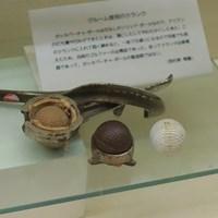 ガッタパーチャ・ボールをつくるクランク(型)。樹液が原料だったボールは形が崩れても再生可能だった JGAゴルフミュージアム ガッタパーチャ・ボール