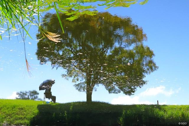 17Hole脇の池