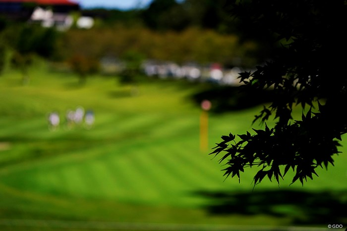 秋まであと少し 2019年 スタンレーレディスゴルフトーナメント 最終日 10H
