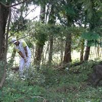 11番では林から渾身のパーセーブ。ボギーなしで完走した 2020年 ザ・CJカップ@ナインブリッジ  最終日 松山英樹