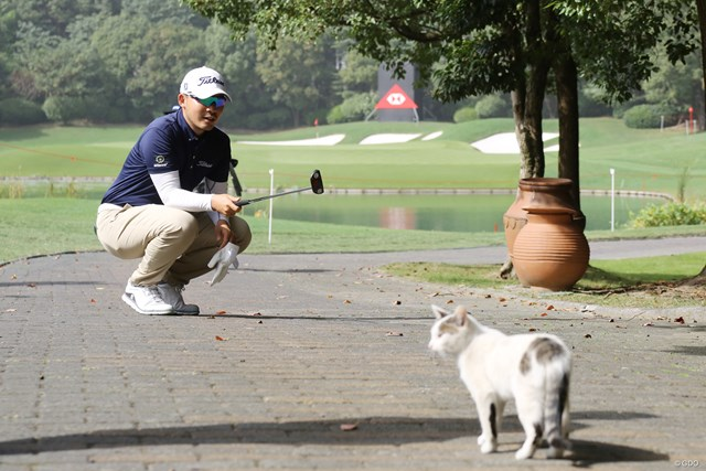 2020年 WGC HSBCチャンピオンズ 事前 川村昌弘 コースにネコが