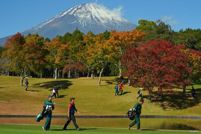 富士山と紅葉と金谷くん。