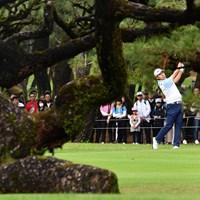 不思議な形の松が多い 2019年 ダンロップフェニックストーナメント 3日目 松山英樹