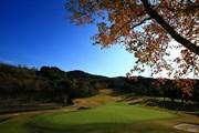 2019年 カシオワールドオープンゴルフトーナメント 最終日 カシオワールドゴルフトーナメント