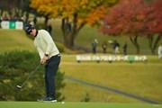 2019年 ゴルフ日本シリーズJTカップ 初日 石川遼