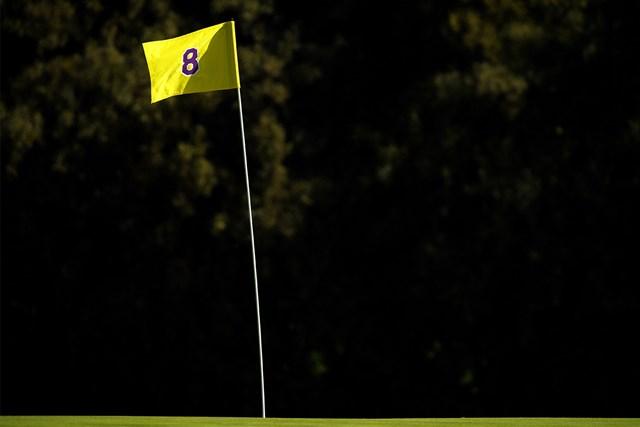 8番ピンフラッグはNBAレイカーズの配色(Harry How/Getty Images)