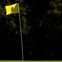 8番ピンフラッグはNBAレイカーズの配色(Harry How/Getty Images) 2020年 ジェネシス招待 初日 フラッグ