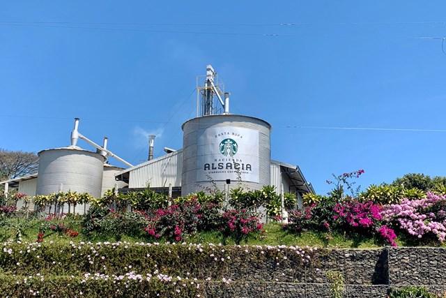 2020年 オマーンオープン 事前 コスタリカのコーヒー農園 スターバックスの工場