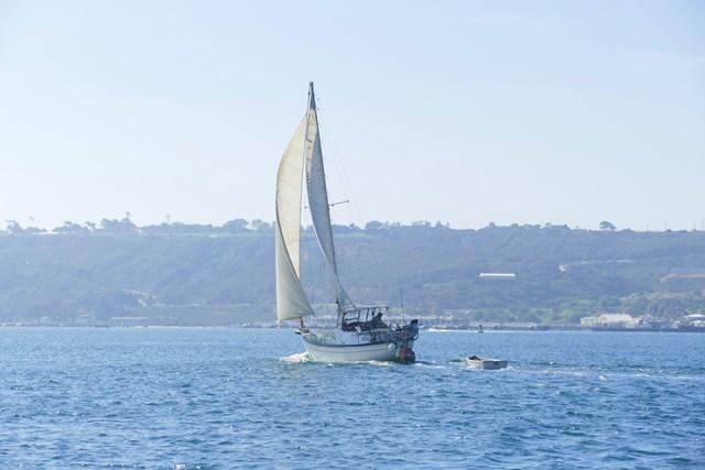 これは少し小型だけど、こういう船がセイルボート(帆船)
