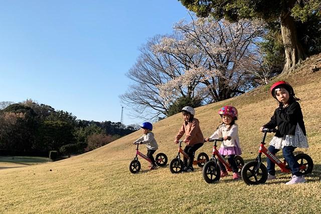 ゴルフ場で遊びまくるぞ!(写真提供:鎌倉パブリックゴルフ場)