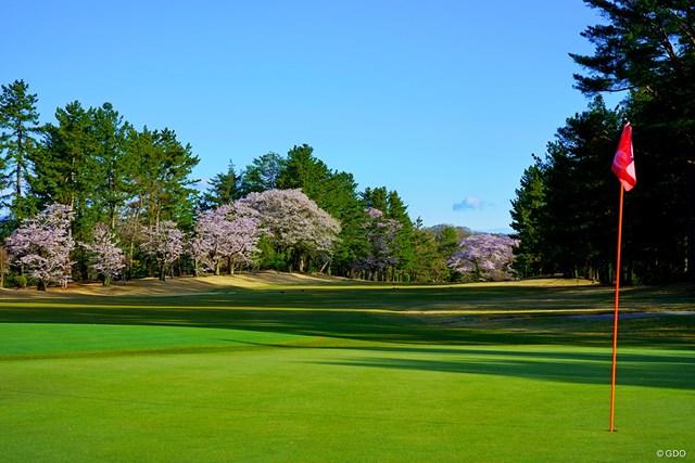 2020年 武蔵野ゴルフクラブ