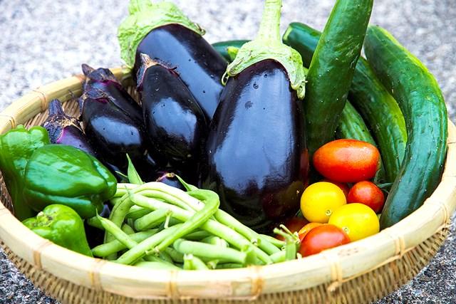 夏バテしない体をつくる3つのポイント 夏野菜い~っぱい!(提供:写真AC、クリエイター:キイロイトリさん)