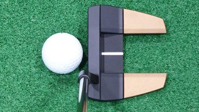 ヘプラー パターを万振りマンが試打「弾きすぎて距離感△」 黒い部分だけ見ると確かにブレードタイプの「タイン3」