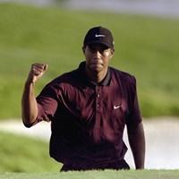 メジャー3連勝を達成したタイガー・ウッズ(2000年全米プロゴルフ選手権 David Cannon/Allsport) 2000年 全米プロゴルフ選手権 最終日 タイガー・ウッズ