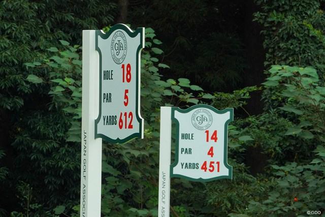 2020年 日本オープンゴルフ選手権競技 2日目 ティグランド えっ?18番と14番??はい、同じティグランドなんです。
