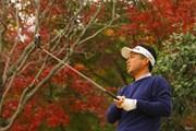 2020年 ゴルフ日本シリーズJTカップ  事前 池田勇太
