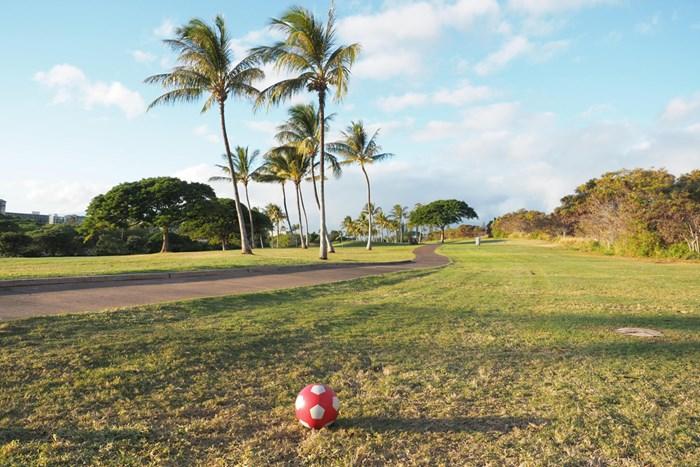 風と傾斜、それにヤシの木がハザードとなる フットゴルフ