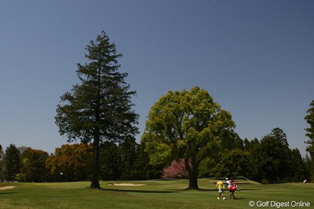 グリーンの前に2本の木が立ちはだかる9番ホール。ティショットがフェアウェイに行っただけでは安心できません。全ホール、全ショット、気が抜けない鶴舞CCです