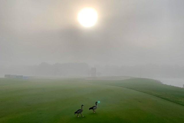 2021年 アブダビHSBCゴルフ選手権 事前 アブダビGC 川村昌弘 朝方は霧が…砂漠にあるコースが幻想的に