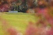 2021年 アクサレディスゴルフトーナメント in MIYAZAKI 初日 河本結