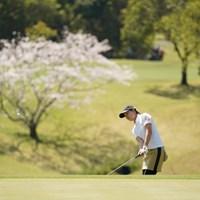 桜バックにアプローチ 2021年 アクサレディスゴルフトーナメント in MIYAZAKI 2日目 福山恵梨