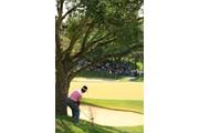 2010年 日本プロゴルフ選手権大会 日清カップヌードル杯 最終日 池田勇太