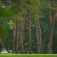 hole6 par4 350yards tee shot 2021年 日本プロゴルフ選手権大会 最終日 寺西明