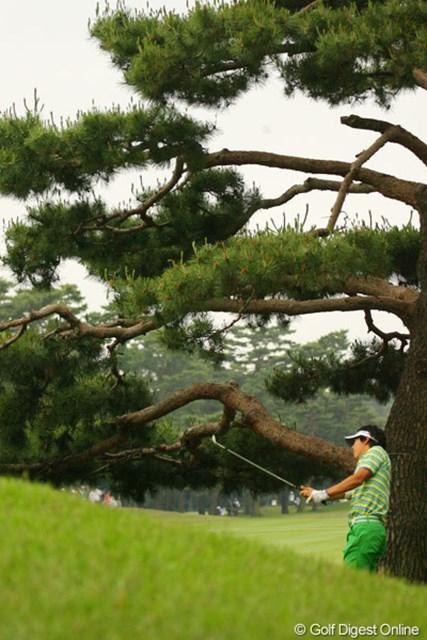 2010年 ダイヤモンドカップゴルフ 3日目 石川遼 最終9番はグリーン横の斜面からナイスアプローチでバーディフィニッシュ!