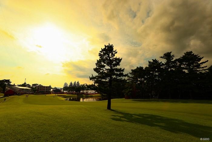 Hole18にあるこの木を入れるか入れないかで悩む 2021年 東京五輪 2日目 オリンピック