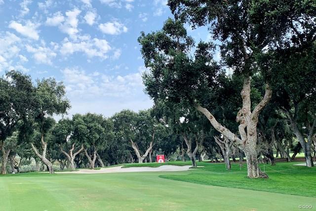 2021年 エストレージャダムN.A.アンダルシア マスターズ 事前 レアル・クラブ・バルデラマ レアル・クラブ・バルデラマにはたくさんの木々が