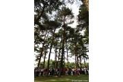 2010年 日本女子オープンゴルフ選手権競技最終日 横峯さくら