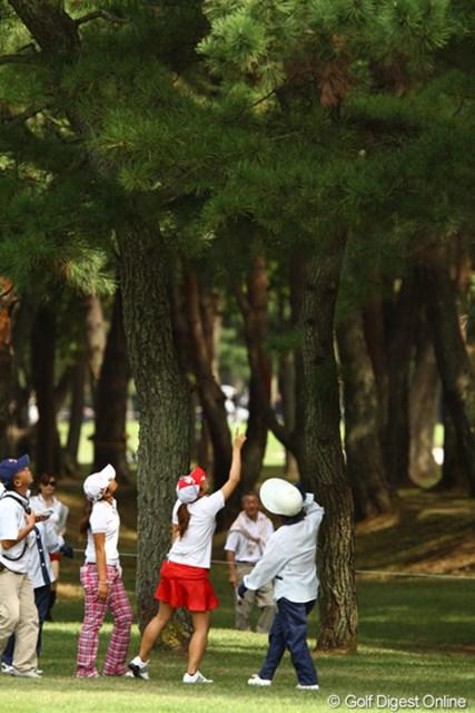 藤本麻子選手のティショットは、松の葉の上に乗っかってしまったようです。しかし自分のボールかどうか確認できなければロストボールに・・・。