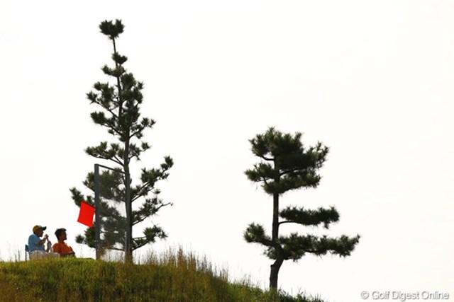 2010年 日本オープンゴルフ選手権競技 3日目 フォアキャディ ブラインドホールが多い愛知CCはフォアキャディだらけです。「赤い旗はまだ打たないでねぇ~。」