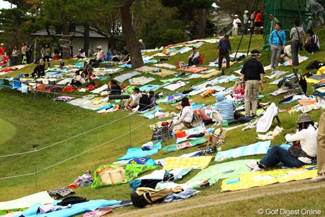 2010年 日本オープンゴルフ選手権競技 最終日 18番グリーンサイド お花見ですか?あっ、時期的には運動会ですかねぇ。