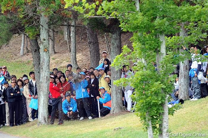 思いっ切り左を向いて9番アイアンでリカバリー・ショッ~ト!そやけどピンはワタシのカメラ方向・・・。そして結果はナイスオン!鬼のスライスや~!どないして打ってるんやろ・・・。 2010年 マイナビABCチャンピオンシップゴルフトーナメント 3日目 石川遼