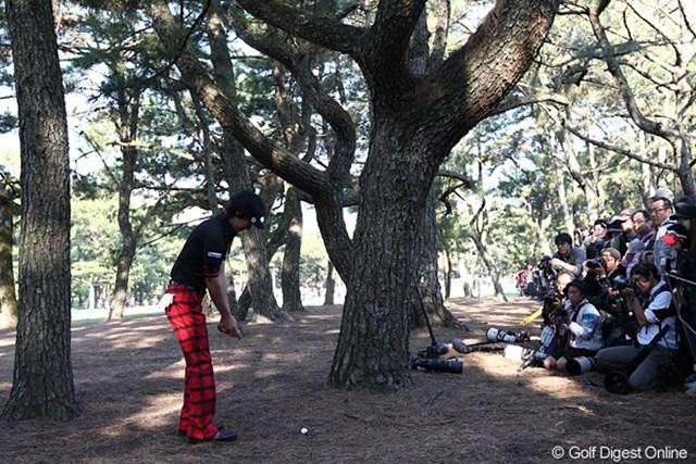 2010年 ダンロップフェニックストーナメント 最終日 石川遼 8番セカンド、林は怖~いです。これが木にあたりサードショットは左打ち。