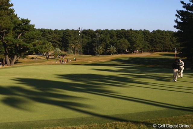 2010年 LPGAツアーチャンピオンシップリコーカップ 2日目 18番グリーン ヤシの木の影がグリーンに落ち、南国ムード漂う宮崎CCです。