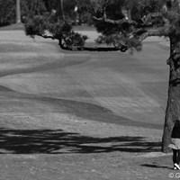 たまにはモノクロ写真でもお楽しみください。 2010年 LPGAツアーチャンピオンシップリコーカップ3日目 イム・ウナ