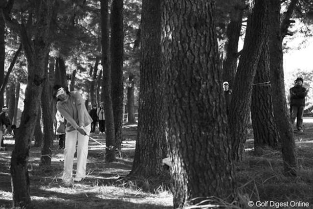 2010年 LPGAツアーチャンピオンシップリコーカップ3日目 福嶋晃子 松の木が密集する宮崎CCでは、林に入れたら出すだけですね。
