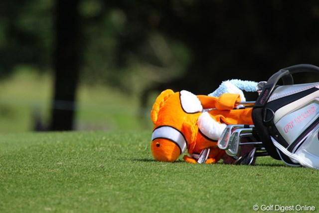 2011年 ダイキンオーキッドレディスゴルフトーナメント 初日 パク・ヒヨンのキャディバッグ 芝生の上でちょっぴり苦しそうなニモ。パク・ヒヨンのキャディバッグです