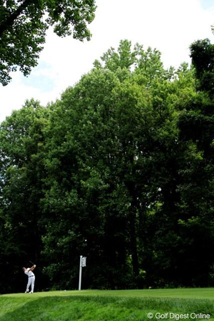 2011年 全米オープン 2日目 ツリーライン 高い木が空を狭め、ショットの難易度を高める