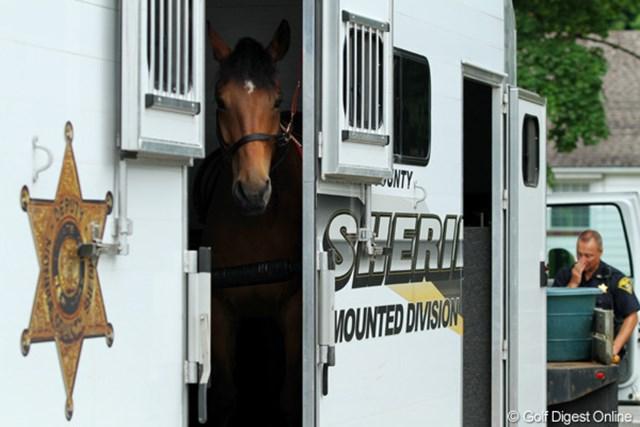 ちゃんと専用の警察車両に乗って出勤です