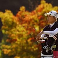 木々も秋めいて来ましたね。 2011年 樋口久子 森永製菓ウィダーレディス 初日 宋ボベ