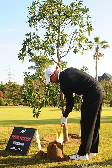 2011年 ホットニュース タイガー・ウッズ 記念植樹のセレモニー。って、アメリカにこんなイベントあるんかなァ?それにしてもタイガーは違和感無くシャベルを使ってせっせと植樹してます